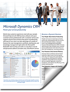 Microsoft Dynamics CRM Customer Service